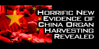 Horrific New Evidence of China Organ Harvesting Revealed
